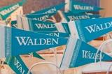 Walden University InfoSession