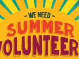 Coliseum Summer VolunteerProgram