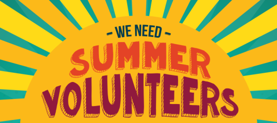 Summer-Volunteers